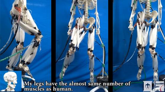 装上肌肉纤维的机器人 看着好像终结者