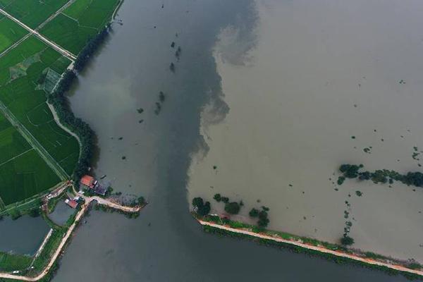 湖北黄梅县考田河堤出现溃口画面