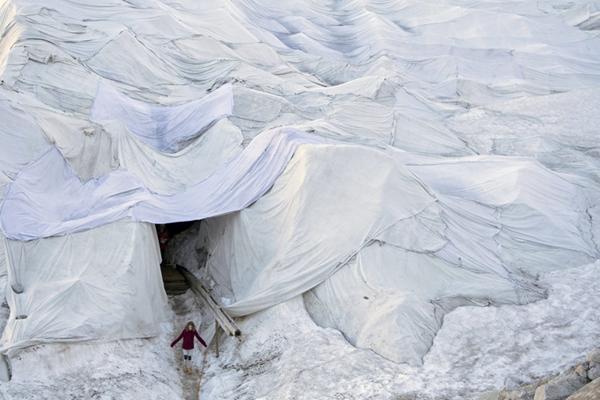 瑞士为阿尔卑斯山最古老冰川盖上毯子 以防止其融化