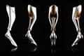 滑雪假肢SOLEIS