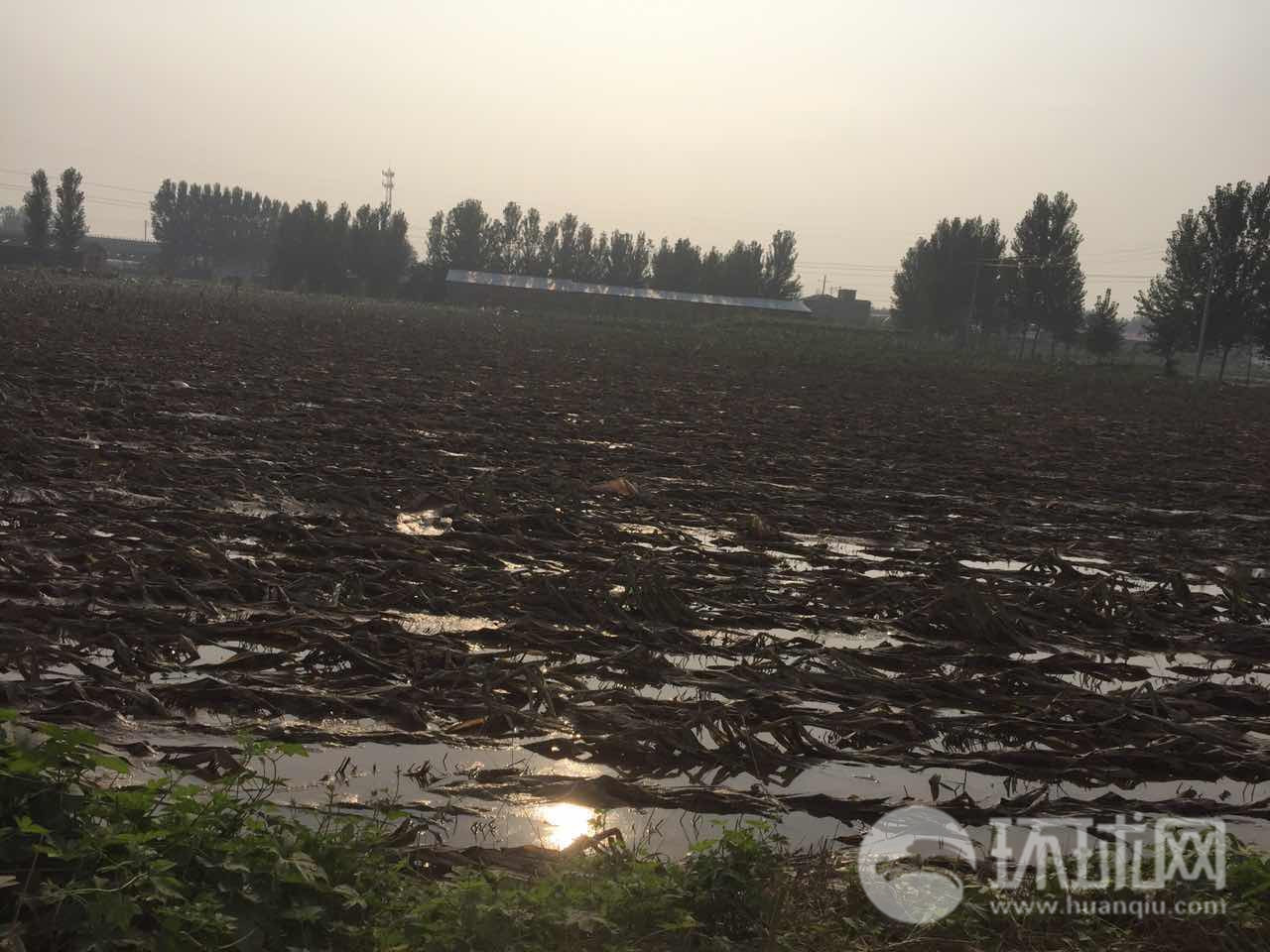 邢台强降雨引发洪灾 环球记者深入大贤村受灾现场