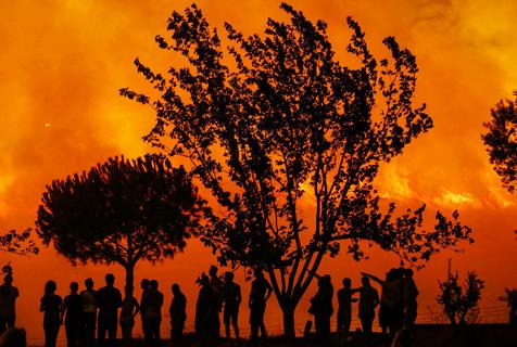土耳其一林地发生火灾引军队出动救火