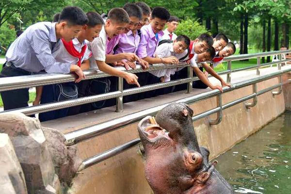 朝鲜平壤中央动物园和自然博物馆竣工