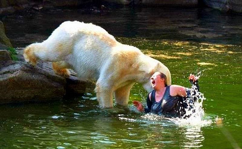 2009年4月11日,一名德国女子突然跳进北极熊馆内熊进食的区域,4头北极熊中的一头游近她并袭击她。她的手、臂、脚和背部被熊严重咬伤,但没有生命危险。动物园管理员说,他们也不清楚该名女子接近北极熊的原因。