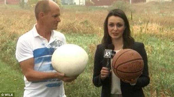 夫妻后院发现比篮球大神秘巨蛋:竟是这种生物