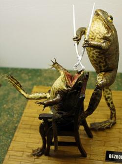 克罗地亚500余只青蛙标本摆人类造型
