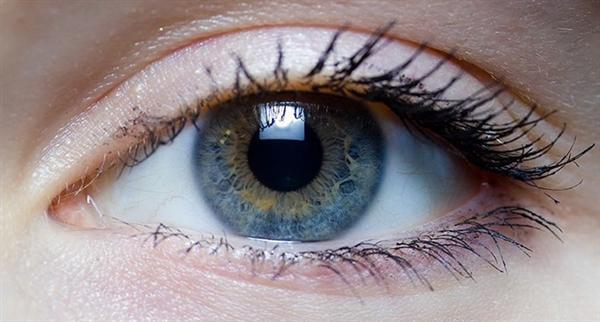人类眼睛的极限