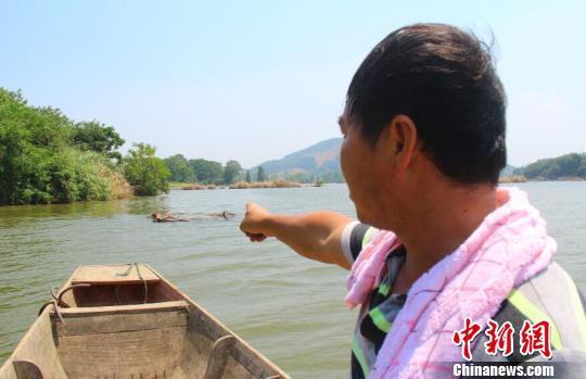 江西都昌遭11级飑线风袭击 一渔民遇难