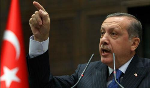 """土耳其总统埃尔多安斥责美高官""""支持政变者"""""""