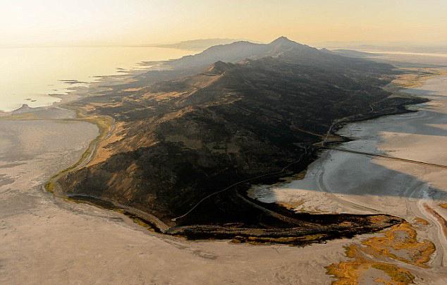 美国西部森林大火规模巨大损失惨重
