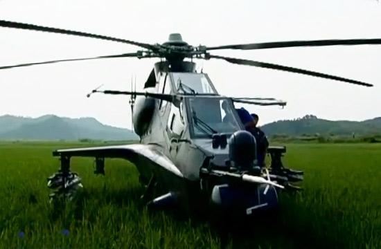 武直10在水稻田上迫降细节公开