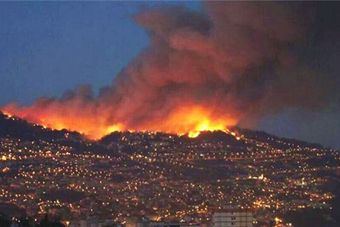 葡萄牙熊熊山火波及多地 火灾160余处