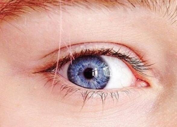蓝眼睛的人源自一祖先
