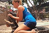 美女子15岁起独自抓短吻鳄