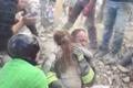 意大利10岁女孩获救 被困地震废墟17小时