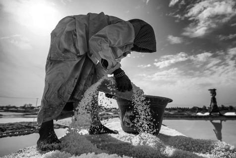 印度盐场工人:条件恶劣收入微薄