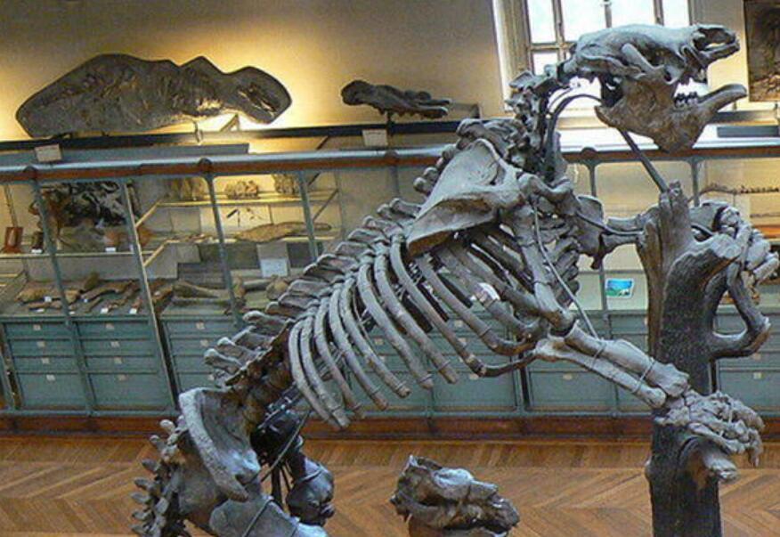 盘点十大可怕的远古巨兽