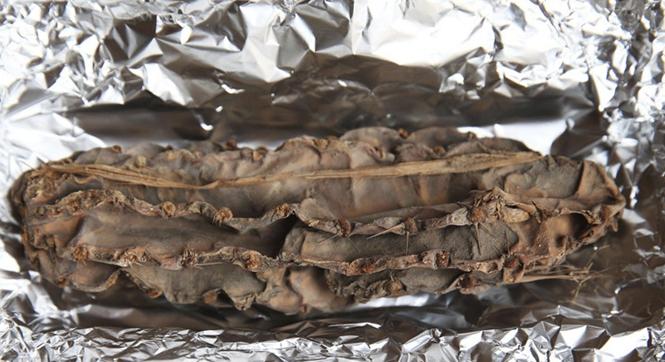 秘鲁考古学家发现一4000年前仙人掌