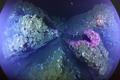 海底火山首次展现全貌