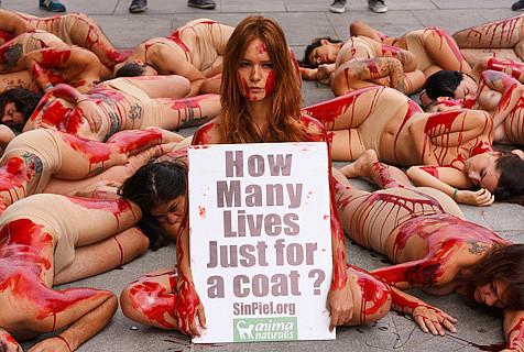 西班牙动物权益者涂血躺尸街头抗议