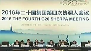 G20第四次协调人会举行