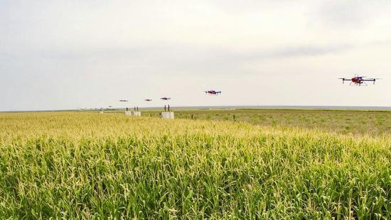 无人机为何不能享受农机补贴