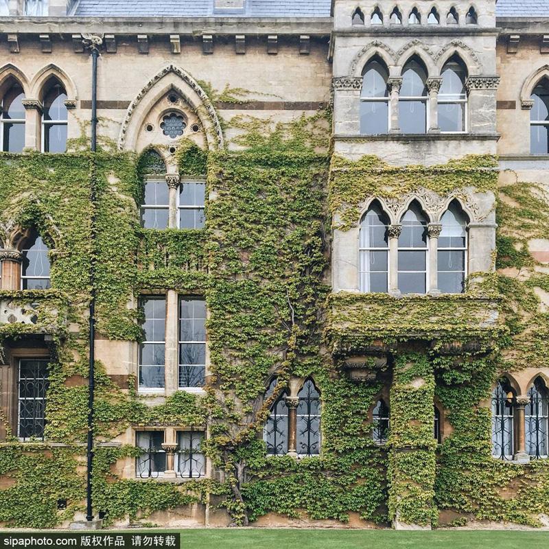 摄影师拍摄假期的牛津大学 宁静安逸
