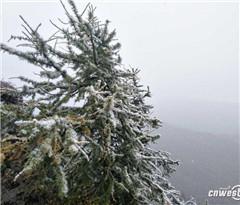 太白山上雪花飘