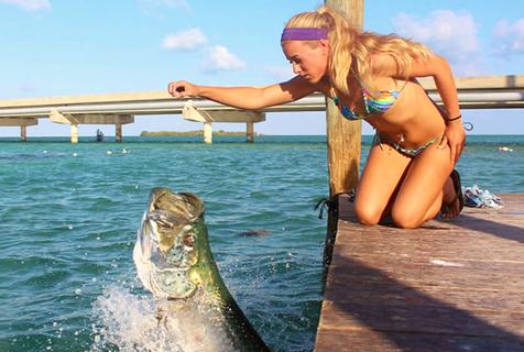 美佛州美女喂食巨型海鲢鱼如猛兽争食