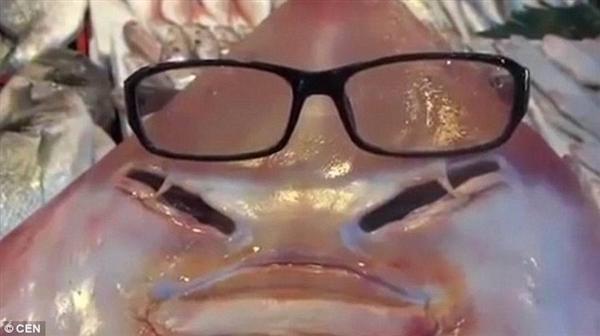 渔民打捞起神秘怪鱼