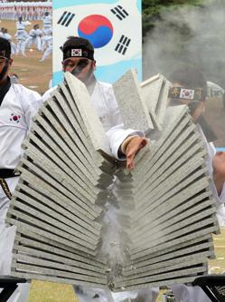韩国建军节仪式彩排 士兵劈砖秀绝技