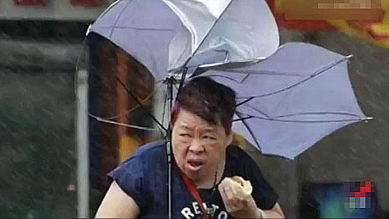 """台湾大妈台风天吃包子照爆红 雨伞""""开花""""照吃不误"""