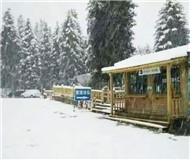 新疆天池飘落第一场雪 景色犹如水墨画