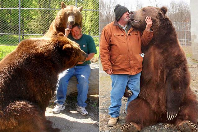 真正的熊孩子!美饲养员与巨熊同睡嬉戏