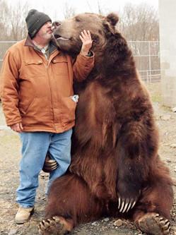 真正的熊孩子!饲养员与巨熊同睡嬉戏