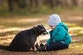 小男孩与浣熊拍温馨写真 深情对视画面好暖