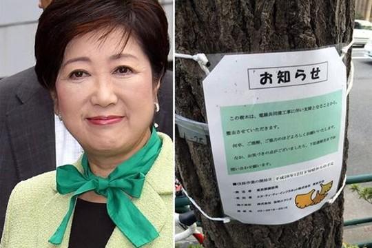 东京为奥运马拉松拟砍伐树木 引外界争议