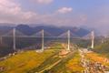 最大跨径多塔斜拉桥