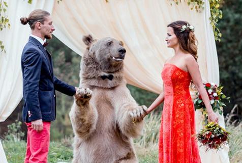 """俄新人请大棕熊当婚礼""""见证人"""""""