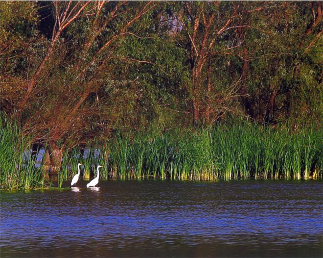 斋堂镇珍珠湖景区:群山环绕中的唯美自然风光