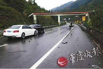 高速行车遇到动物横穿,该不该压?