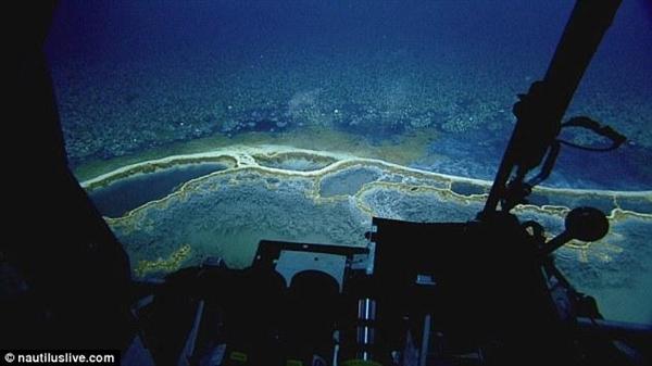 """生物有来无回!墨西哥海底惊现""""死亡之池"""""""