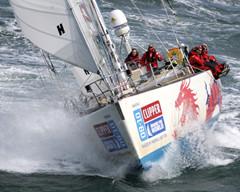 克利伯环球帆船赛将连续八次停靠青岛