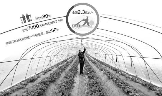 农业部详解农地三权分置:补贴向新型经营主体倾斜
