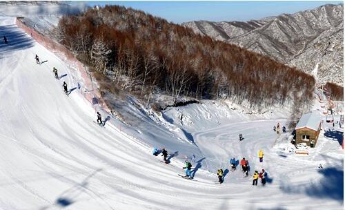 崇礼滑雪季大学生免费滑攻略