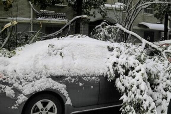 冬季停车也有讲究 一不小心就得去修理厂