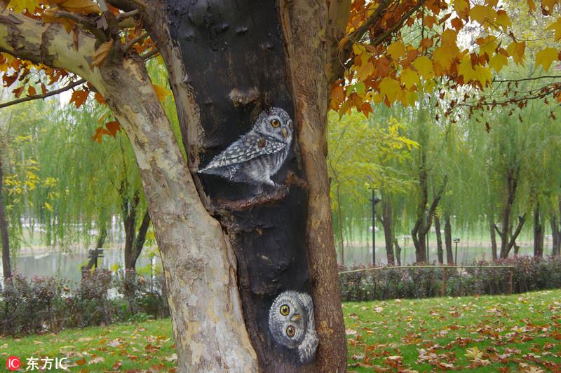 在一小片法国梧桐和国槐树皮脱落的部分,画着一个个栩栩如生的小动物