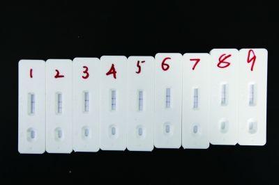 你买的新米可能被石蜡抛光!9份新米样品3份检出石蜡