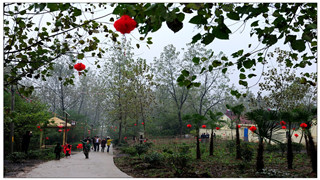"""生态体验--""""大泉人家""""茉莉花园"""