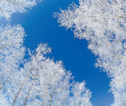 冰雪旅游领跑冰雪经济